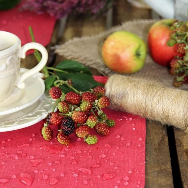 BISTRO ALLEGRO Tischläufer abwaschbar, 50x140cm, Farbe 1-rot (0)
